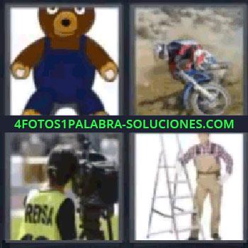 4 Fotos 1 Palabra - osito de peluche, motorista por el campo, cámara de televisión, señor con escalera, oso.