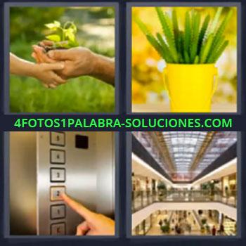4 Fotos 1 Palabra - siete-letras maceta amarilla, Elevador o ascensor, Centro comercial