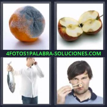 4 Fotos 1 Palabra - naranja pescado. Manzana. Comida con mal olor.