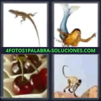 4 Fotos 1 Palabra - seis-letras lagartija sirena, cerezas, mono.
