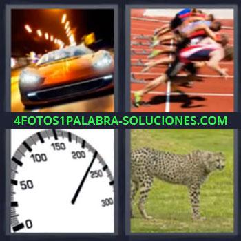 4 Fotos 1 Palabra - cinco-letras leopardo. Coche deportivo. Carrera velocidad. Velocimetro. Guepardo