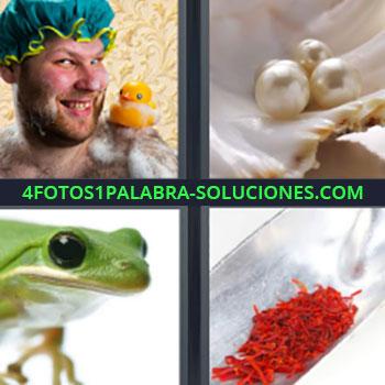 4 Fotos 1 Palabra - cinco-letras hombre con patito de goma y gorra de baño. Perlas en una ostra. Rana verde. Azafrán rojo.