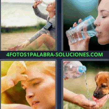 4 Fotos 1 Palabra - cinco-letras bebiendo agua. Personas bebiendo agua. Mujer con calor. Dando de beber al perro.