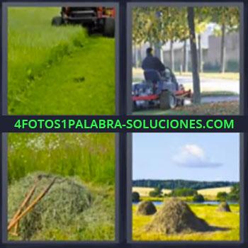 4 Fotos 1 Palabra - cinco-letras cesped, Maquina cosechando campos, Cortando el pasto, Cosecha de hierba