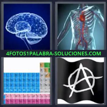 4 Fotos 1 Palabra - cuatro-letras cerebro tabla periodica ,radiografía de el cerebro, radiografía del cuerpo, tabla periódica de los elementos químicos, bandera negra con una A rodeada.