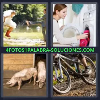 4 Fotos 1 Palabra - seis-letras cerdos, Pareja novios jugando con agua, Chica poniendo lavadora, Señorita haciendo la colada, Cerdos o puercos, Bicicleta con barro