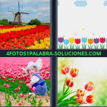 4 Fotos 1 Palabra - ocho-letras flores de colores molino de viento. Dibujo flores. Niña en campo de claveles rosas. Flores rojas y amarillas.