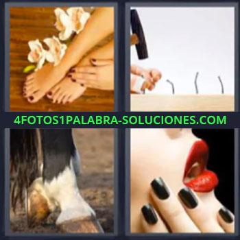 4 Fotos 1 Palabra - pies mujer, Clavando con martillo, Patas y cascos caballo, Mujer labios rojos