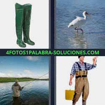 4 Fotos 1 Palabra - seis-letras hombre pescando. Botas largas verdes. Flamenco o ave en el agua. Señor con cubo amarillo y ropa de pescar.