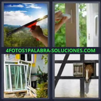 4 Fotos 1 Palabra - siete-letras limpiando un vidrio, Limpiando cristales, Abriendo puertas, Cristales, Caballo sacando cabeza por ventanita.