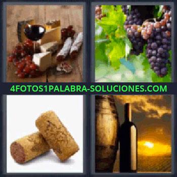 4 Fotos 1 Palabra - uvas, Queso con uva, una copa y embutido, Racimo, Tapones de corcho, Barril y botella con puesta de sol.