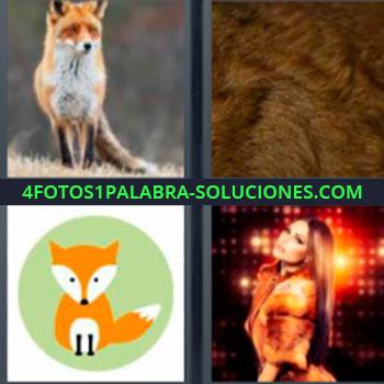 4 Fotos 1 Palabra - cuatro-letras abrigo. Zorro salvaje. Piel de animal. Dibujo de lobo. Mujer con luces rojizas de fondo.