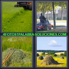 4 Fotos 1 Palabra - Cesped Cortando El Pasto Cosecha De Hierba Maquina Cosechando Campos |