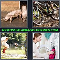 4 Fotos 1 Palabra - Pareja jugando en el fango o barro |