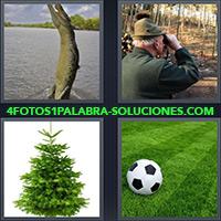 4 Fotos 1 Palabra - Lagarto o Cocodrilo |